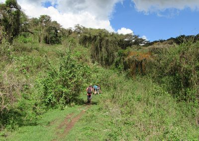 Hiking in the Ngorongoro Conservation Area