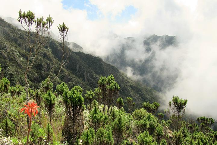 Mt. Hanang