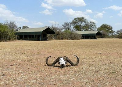 Tented Camp in Serengeti NP