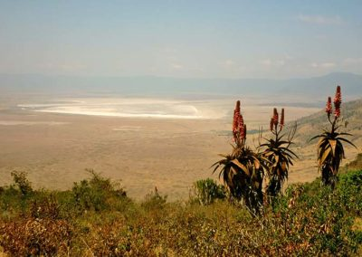 View into the Ngorongoro Crater